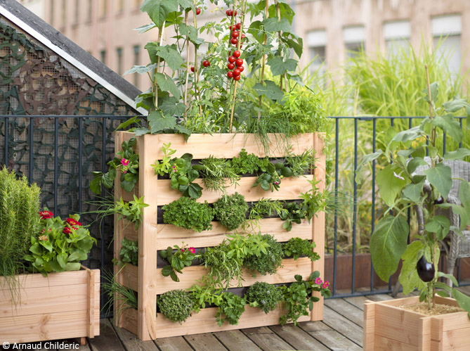 Planter til terrassen for Plante en pot pour terrasse