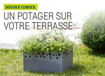 illustration potager terrasse