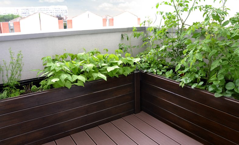 potager terrasse ma terrasse. Black Bedroom Furniture Sets. Home Design Ideas