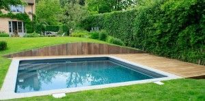 photo terrasse piscine bois